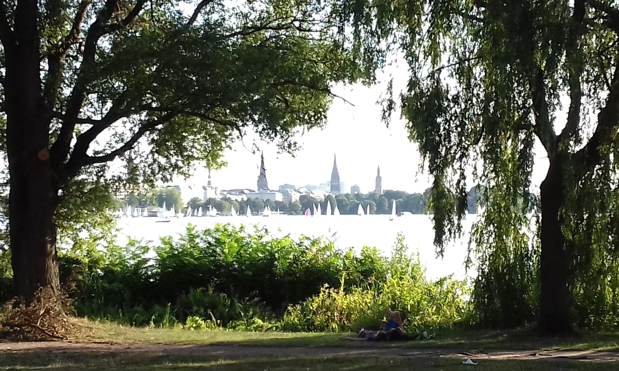 Alster through willows